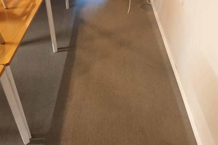 ניקוי שטיחים לעסקים אחריי