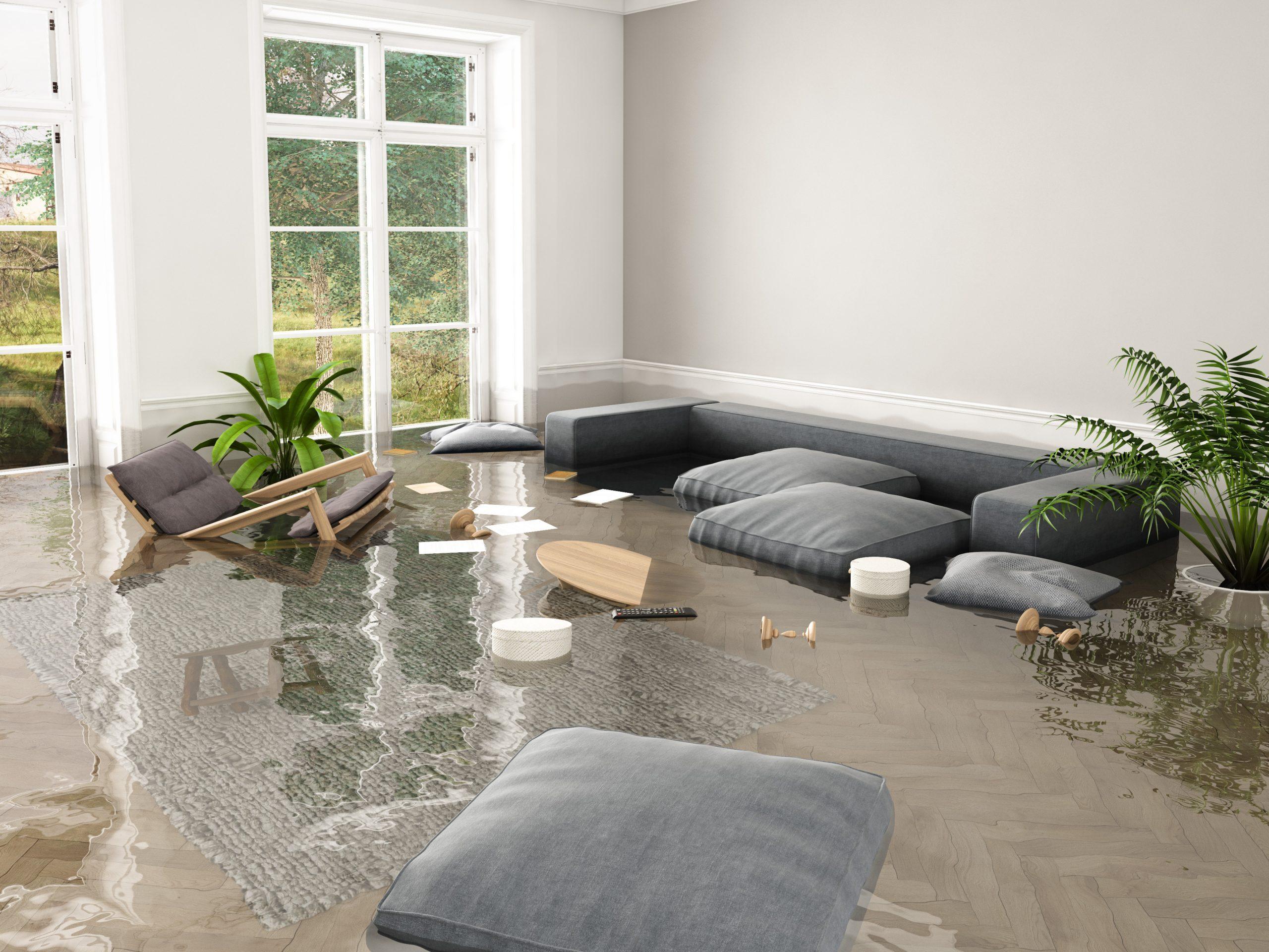 שיקום נזקי מים וטיפול בהצפות ונזקים