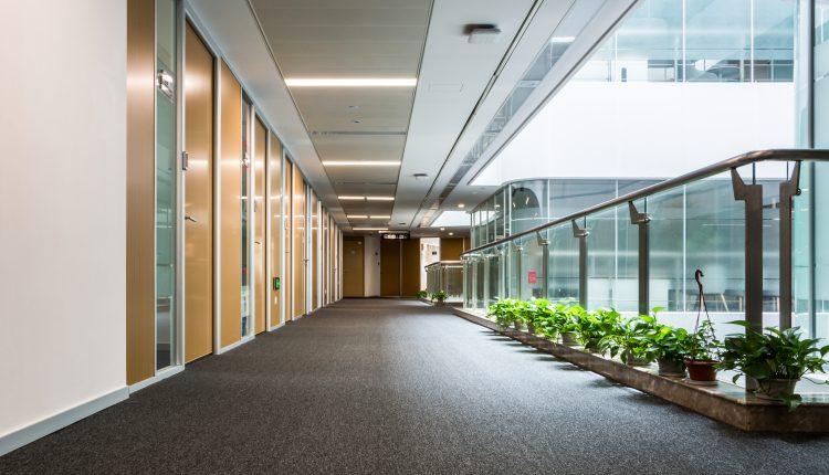 כל היתרונות ניקוי שטיחים במקום אחד! מקצוענים 2000 מחירים ללא תחרות!